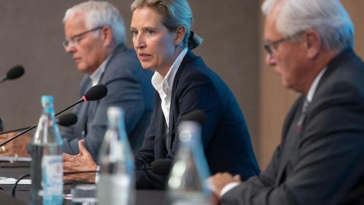 Alice Weidel (AfD) nimmt an einer Pressekonferenz teil. Foto: Marijan Murat/dpa