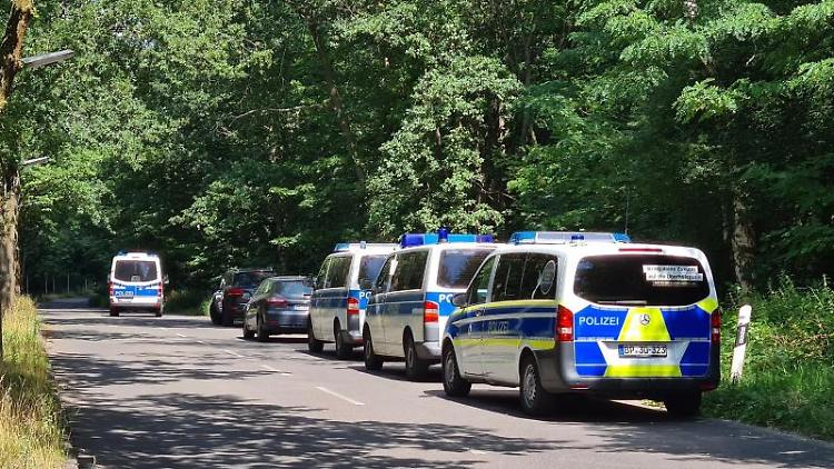 Polizeiautos stehen in einem Waldstück zwischen Babelsberg und Dreilinden. Foto: Julian Stähle/dpa-Zentralbild/dpa/archiv