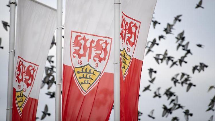 Flaggen mit dem Logo des VfB Stuttgart wehen auf dem Trainingsgelände. Foto: Fabian Sommer/dpa/Archivbild