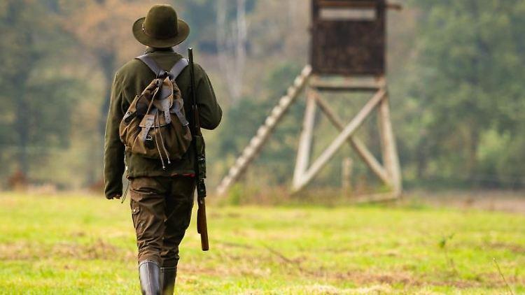 Eine Jägerin geht zu einem Hochsitz. Foto: Philipp Schulze/dpa/Symbolbild