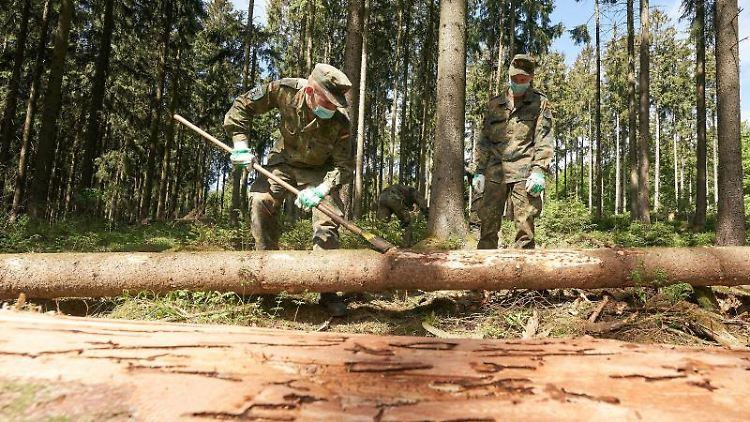 Bundeswehrsoldaten schälen vom Borkenkäfer befallene Rinde von Baumstämmen. Foto: Thomas Frey/dpa/Archivbild