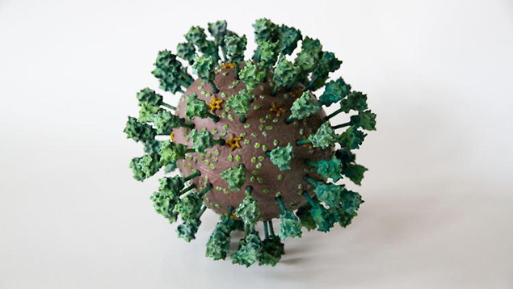 3D_Coronavirus beschnitten.jpg