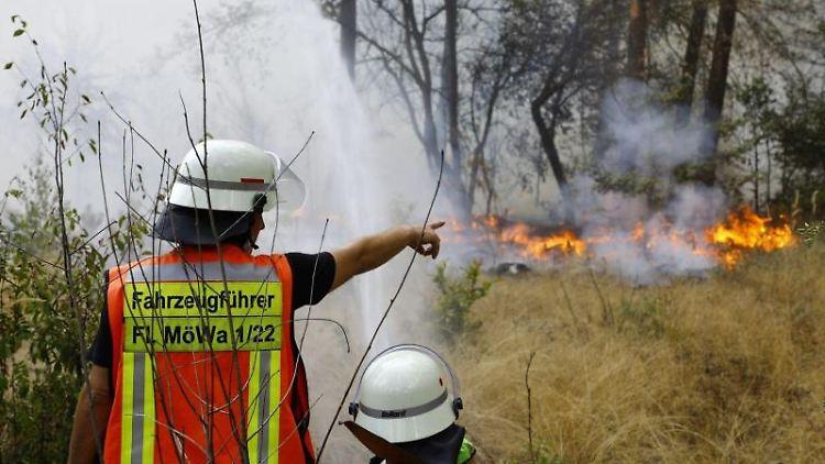Einsatzkräfte löschen einen Waldbrand zwischen Mörfelden-Walldorf und dem Frankfurter Flughafen. Foto: Matthias Mayer/