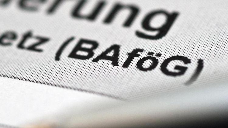 Ein Antrag für Bafög liegt auf einem Tisch. Foto: Andrea Warnecke/dpa/Illustration