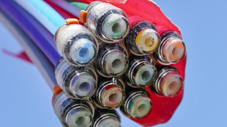 Ein Bündel mit Umhüllungen für Glasfaserkabel. Foto: Uwe Anspach/dpa/Symbolbild