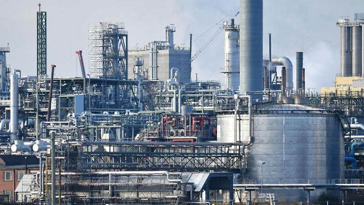 Industrieanlagen des Chemiekonzerns BASF stehen am Rheinufer auf dem Werksgelände. Foto: Uwe Anspach/dpa/Archivbild