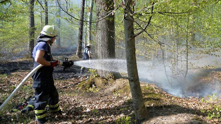 Feuerwehrkräfte löschen einen Waldbrand. Foto: Sven Friebe/SDMG/dpa/Symbolbild