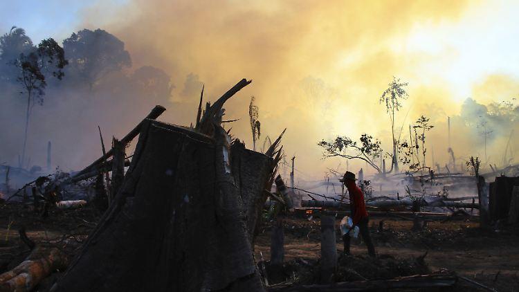 Die Brände im Amazonas seien ein entscheidender Faktor, warum das Freihandelsabkommen zwischen der EU und Südamerika noch nicht unterzeichnet ist.