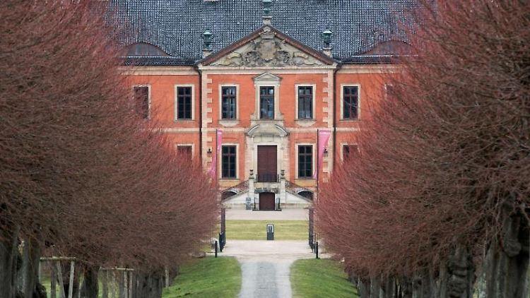 Blick durch die Festonallee auf das Schloss Bothmer. Foto: Jens Büttner/dpa-Zentralbild/dpa/Symbolbild