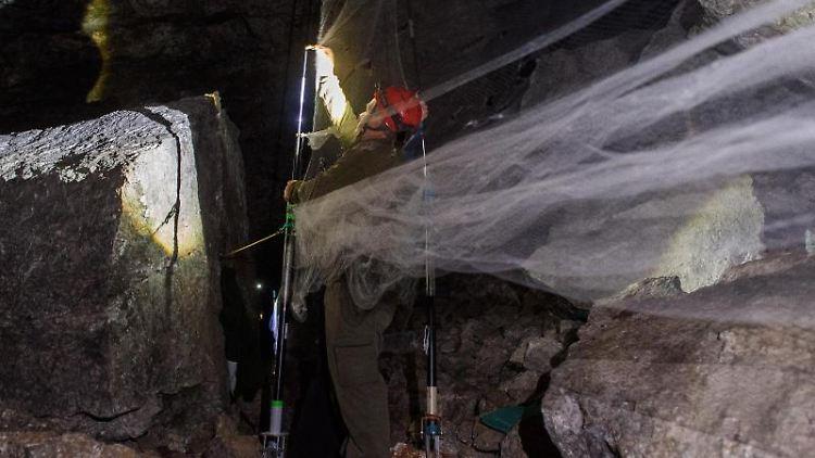 Fledermausberingung in der Höhle