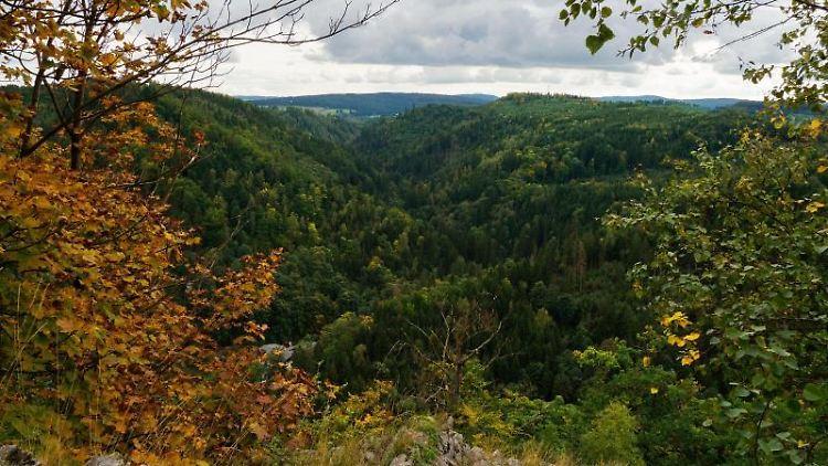 Blick über das Höllental im Frankenwald. Foto: picture alliance/Nicolas Armer/dpa/Archivbild