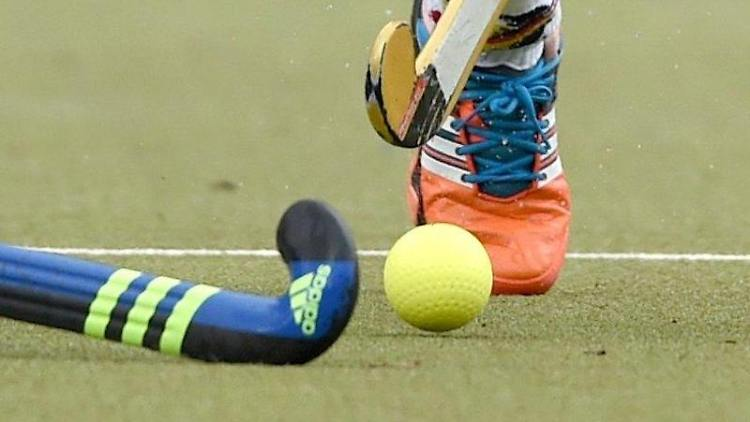 Zwei Schläger versuchen beim Feldhockey den Ball zu schlagen. Foto: picture alliance/dpa/Symbolbild