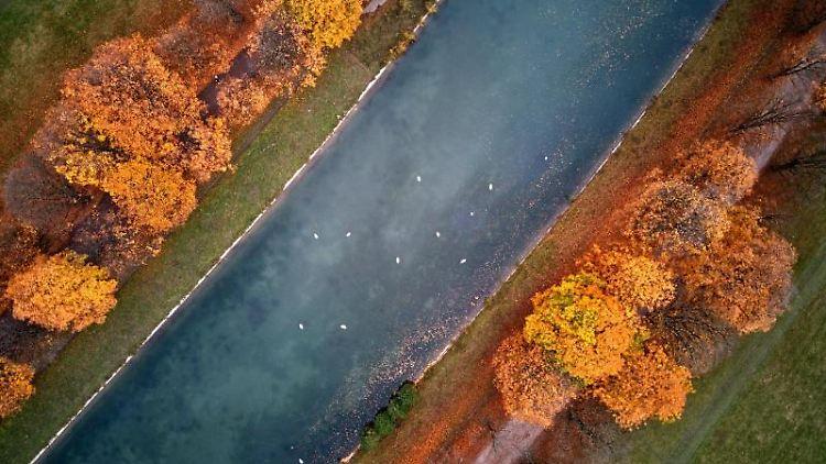 Herbstlich gefärbte Bäume stehen im Kölner Stadtwald am Decksteiner Weiher. Foto: Henning Kaiser/dpa