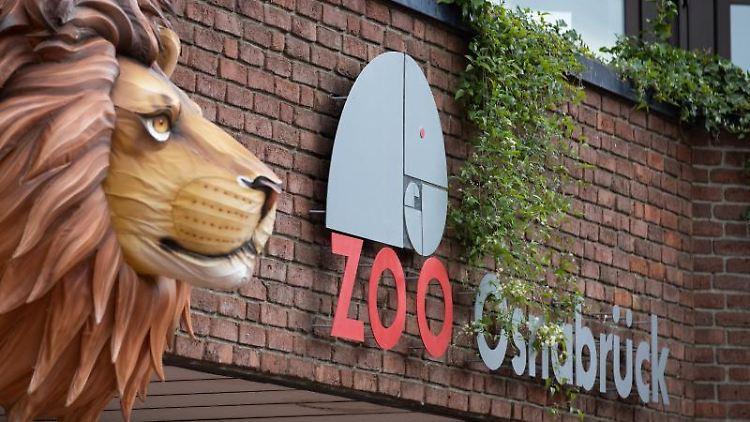 Blick auf den Eingangsbereich des Zoo Osnabrück. Foto: Friso Gentsch/dpa/Symbolbild