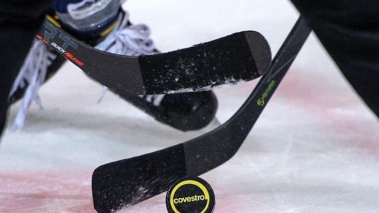 Mehrere Eishockeyspieler kämpfen um den Puck. Foto: Bernd Thissen/dpa/Symbolbild