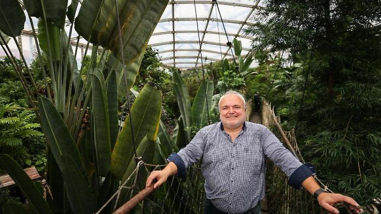Leipzigs Zoo-Chef Jörg Junhold steht in der Tropenhalle. Foto: Jan Woitas/dpa-Zentralbild/dpa/Archivbild