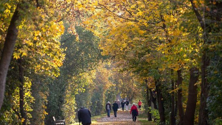 Spaziergänger gehen durch eine Allee mit herbstlich gefärbten Bäumen. Foto: Daniel Karmann/dpa/Archivbild