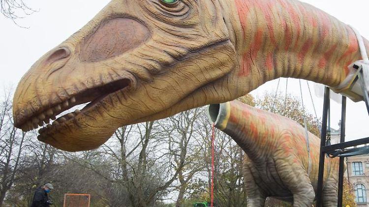 Das Modell eines Langhalssauriers Seismosaurus wird vor dem Landesmuseum aufgebaut. Foto: Julian Stratenschulte/dpa