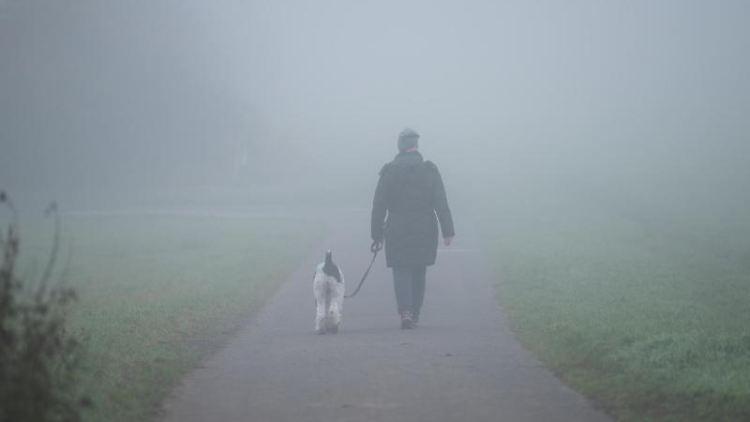Eine Frau geht mit einem Hund im Nebel spazieren. Foto: Silas Stein/dpa
