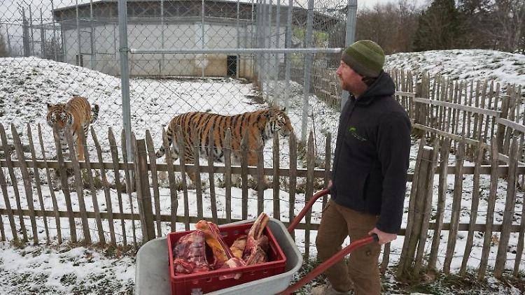 Tierparks Rlp