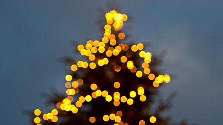 Ein mit einer Lichterkette beleuchteter Tannenbaum. Foto: Daniel Bockwoldt/dpa/Symbolbild