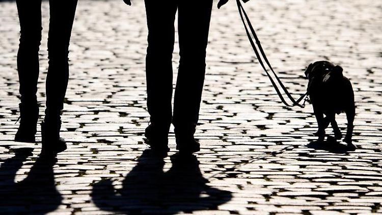 Fußgänger laufen am Morgen mit einem Hund an der Leine. Foto: Robert Michael/dpa-Zentralbild/ZB/Symbolbild