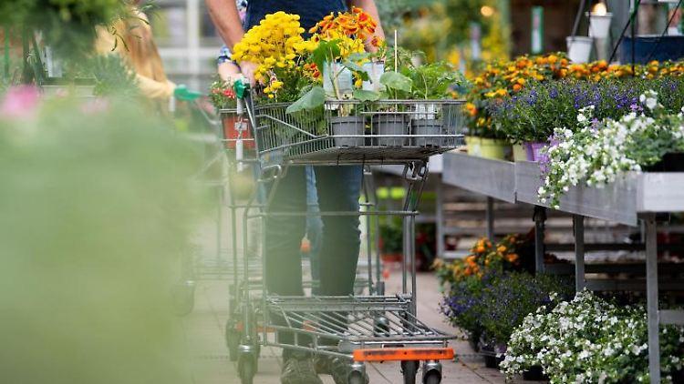 Ein Mann kauft in einem Gartencenter ein. Foto: Sven Hoppe/dpa/Symbolbild
