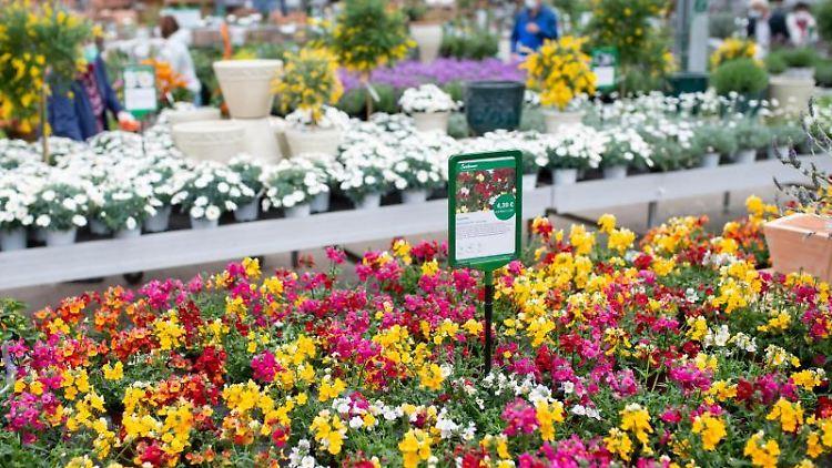 Kunden kaufen im Gartencenter ein. Foto: Sven Hoppe/dpa/Archivbild