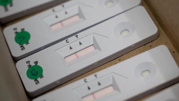 Negative Corona-Schnelltests liegen in einem Karton. Foto: Sebastian Gollnow/dpa/Archivbild