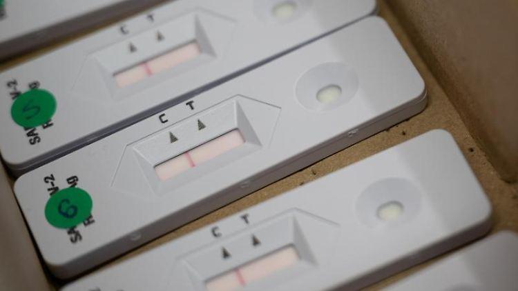 Negative Corona-Schnelltests liegen in einer Kiste. Foto: Sebastian Gollnow/dpa