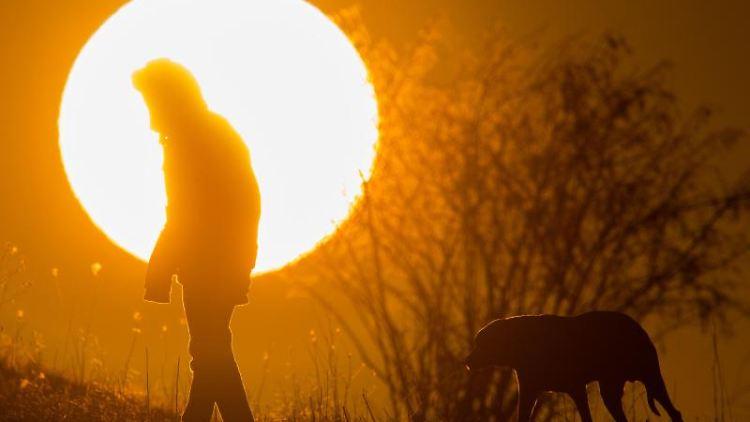 Ein Mann spaziert mit einem Hund bei Sonnenaufgang über einen Feldweg. Foto: Julian Stratenschulte/dpa/Symbolbild