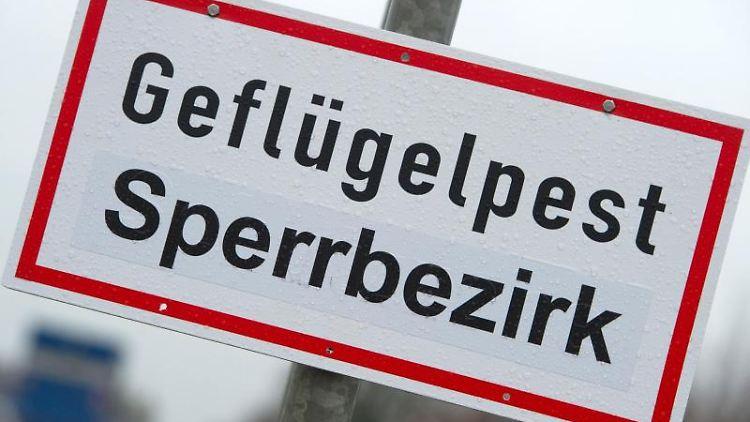 Ein Schild warnt vor einem Geflügelpest-Sperrbezirk. Foto: Stefan Sauer/dpa-Zentralbild/dpa/Symbolbild