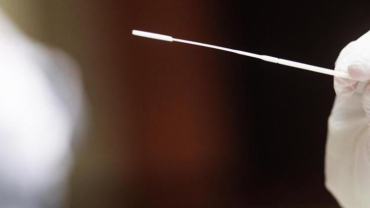 Eine Mitarbeiterin in einem Testzentrum hält ein Stäbchen für einen Rachenabstrich in der Hand. Foto: Christophe Gateau/dpa