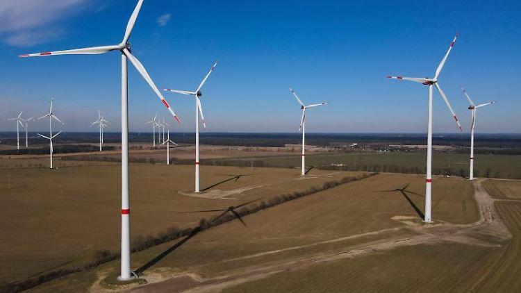Der Windpark