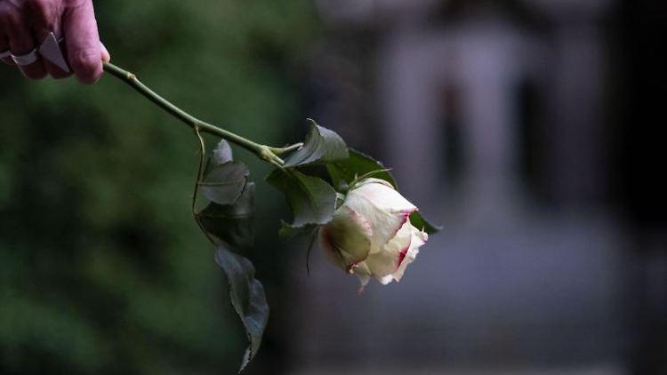 Eine Rose ist vor einem Grabstein im Abendlicht zu sehen. Foto: Peter Steffen/dpa/Symbolbild
