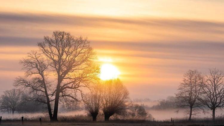 Die Sonne geht hinter Bäumen in der Region Hannover auf. Foto: Moritz Frankenberg/dpa