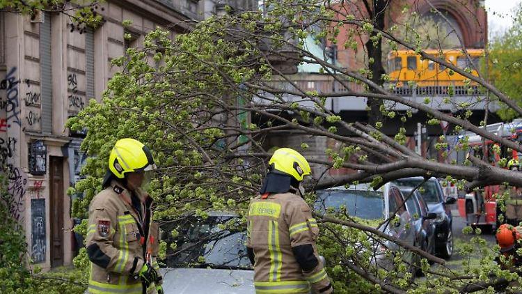 Feuerwehrleute zerlegen einen Baum, der auf einen Pkw gestürzt ist. Foto: Paul Zinken/dpa-Zentralbild/dpa