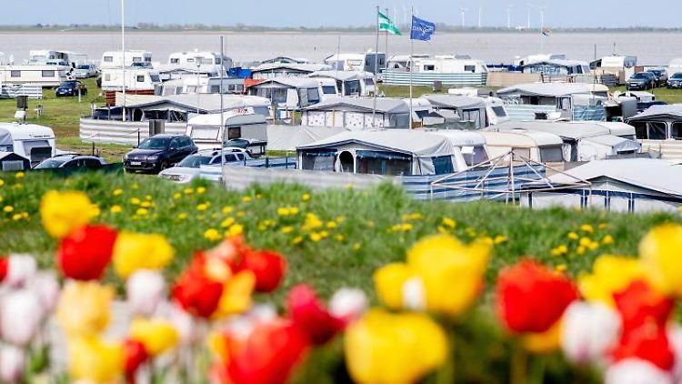 Zahlreiche Wohnwagen und Vorzelte stehen bei sommerlichen Temperaturen auf einem Campingplatz für Dauercamper im Ortskern, während im Vordergrund zahlreiche bunte Tulpen blühen. Foto: Hauke-Christian Dittrich/dpa