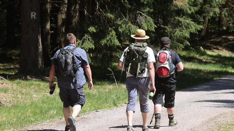 Drei Wanderer laufen am Himmelfahrtstag. Foto: Bodo Schackow/dpa-Zentralbild/dpa/Symbolbild