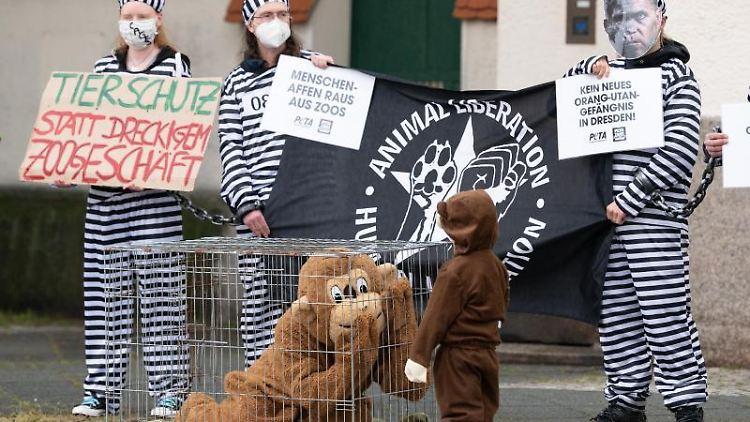Ein als Affe verkleideter Mensch sitzt bei einerDemonstration in einem Käfig. Foto: Sebastian Kahnert/dpa-Zentralbild/dpa