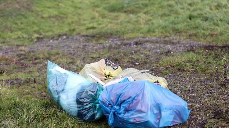 Mehrere Mülltüten liegen abseits einer Straße auf einer Wiese. Foto: Jan Woitas/dpa-Zentralbild/dpa