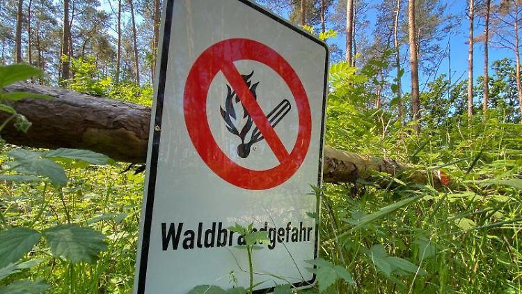 Die Waldbrandgefahr nimmt in den kommenden Tagen in Sachsen zu. Foto: Julian Stratenschulte/dpa/Symbolbild