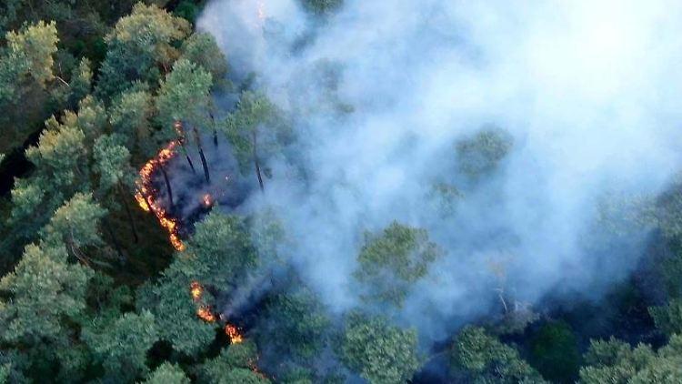 Rauch steigt über einem Waldstück auf, in dem Flammen zu sehen sind. Foto: Ralf Drefin/dpa