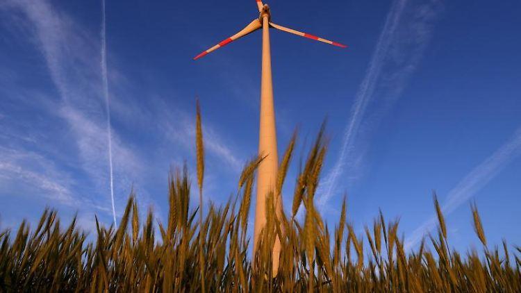 Ein Windrad in einem Getreidefeld. Foto: Karl-Josef Hildenbrand/dpa/Symbolbild/Archiv