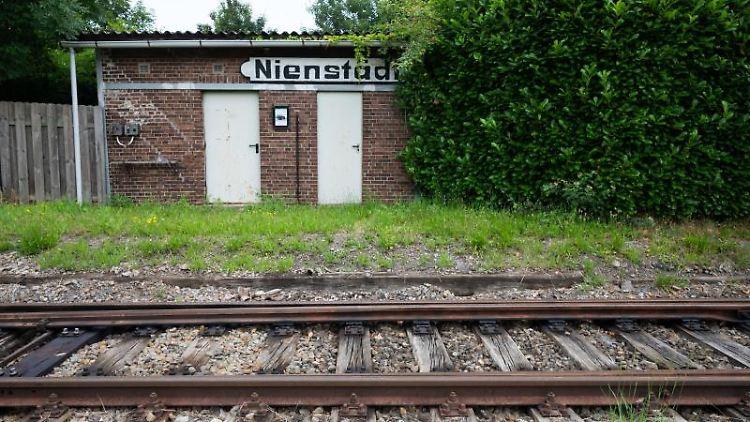 Schienen verlaufen auf einer alten Bahnstrecke. Foto: Julian Stratenschulte/dpa/archivbild