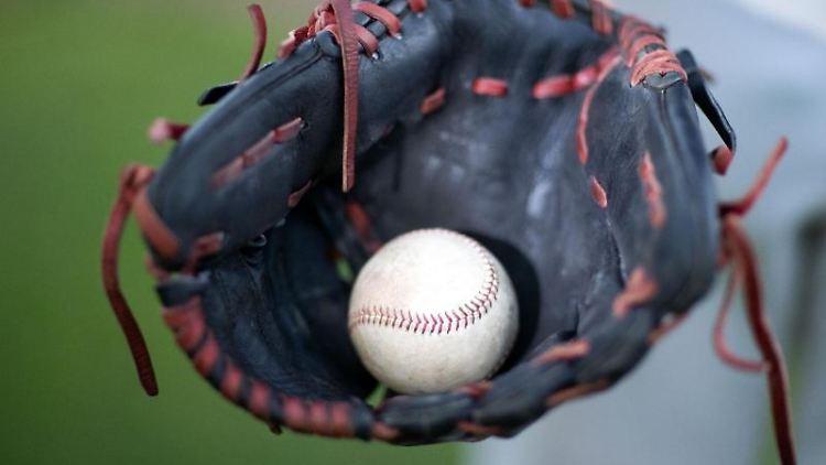 Ein Baseball liegt in einem Fanghandschuh. Foto: Jens Büttner/dpa-Zentralbild/dpa/Symbolbild