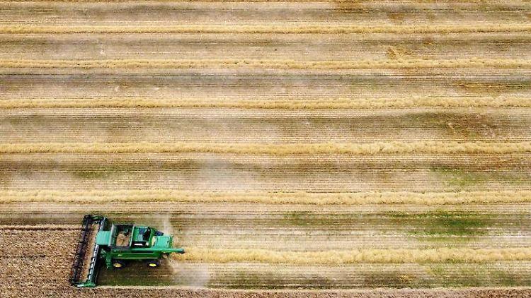 Ein Mähdrescher erntet ein Feld ab. Foto: Gareth Fuller/Press Association/dpa