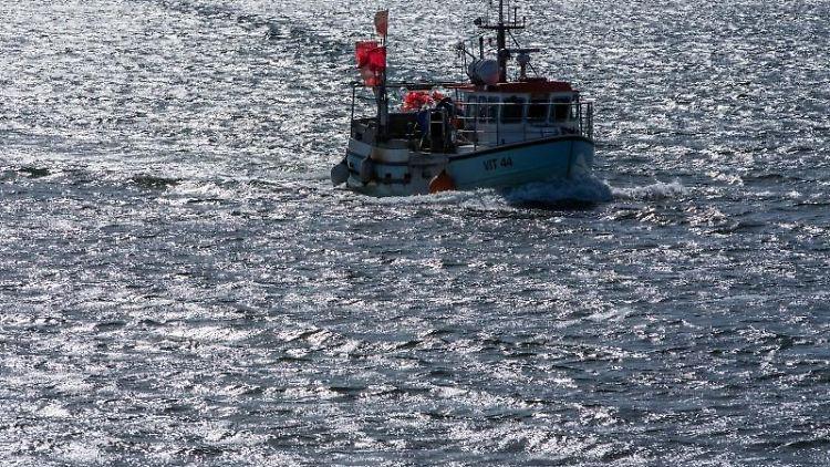 Ein Fischkutter fährt auf der Ostsee. Foto: Jens Büttner/dpa-Zentralbild/dpa/Symbolbild
