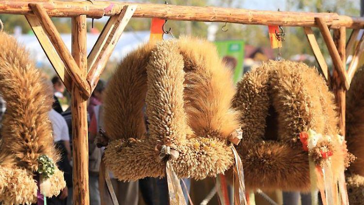 Erntekronen hängen beim Landeserntedankfest Sachsen-Anhalt in Magdeburg. Foto: Peter Gercke/dpa-Zentralbild/dpa/Archivbild