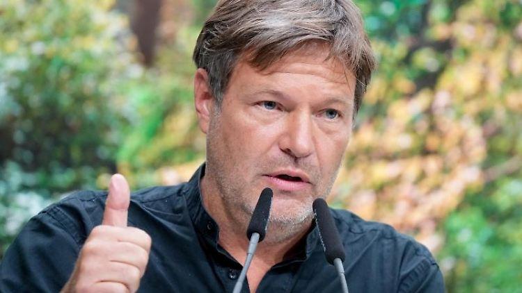 Robert Habeck (Die Grünen)spricht. Foto: Kay Nietfeld/dpa/Archivbild